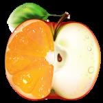 Check GMO Icon